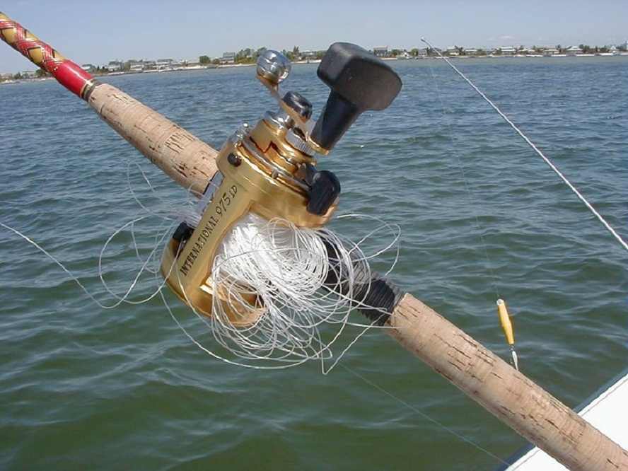 Fishing tips and tricks how to catch any fish for How to fishing