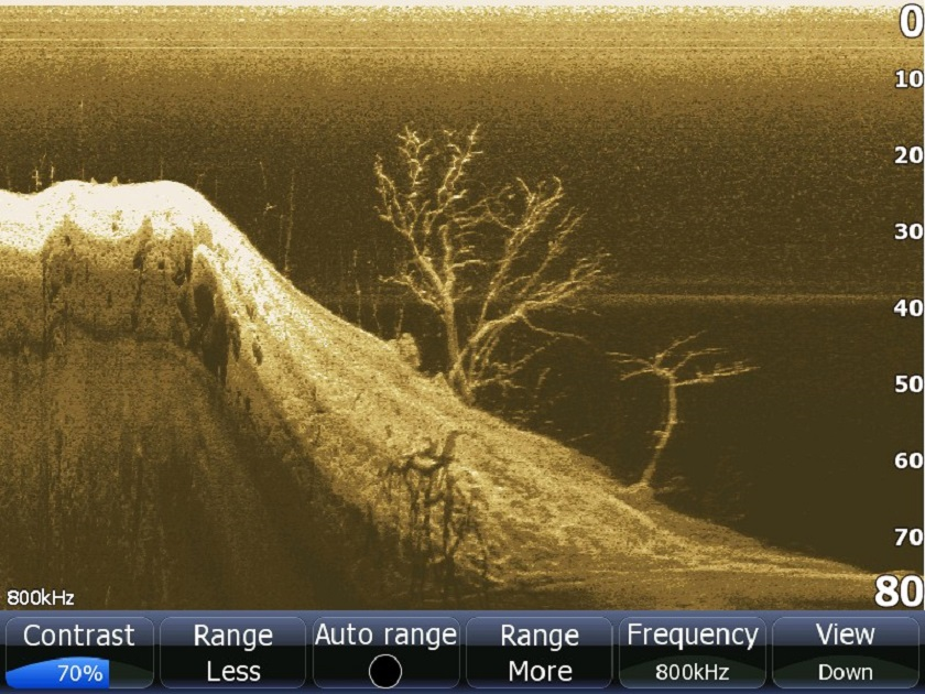 down imaging sonar